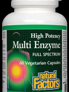 Natural Factors | Multi Enzyme
